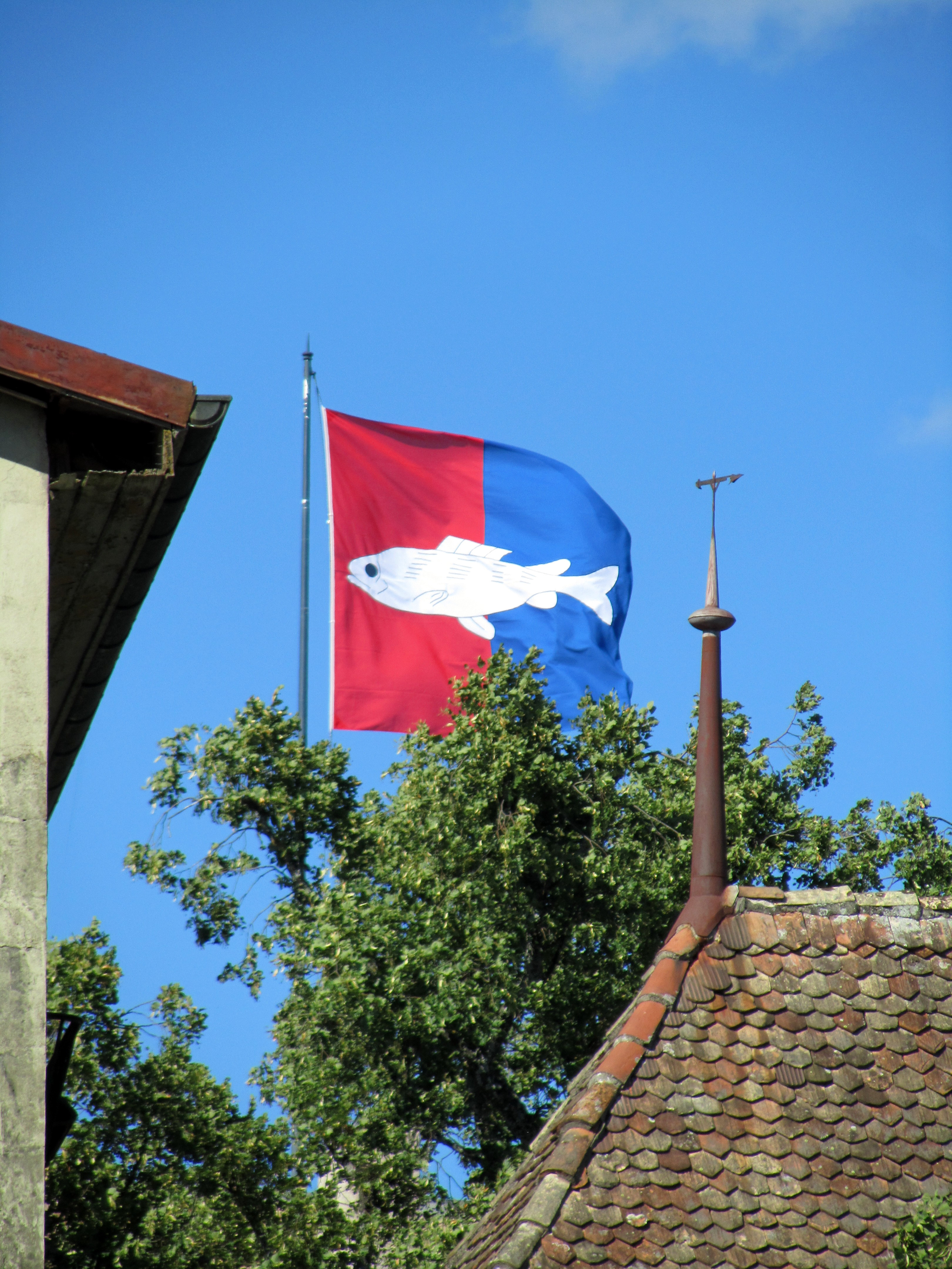 Nyon-Commune-Flag1